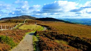 Very happy holiday renters over Christmas and New Year but vacancies now until Spring.   How about a lovely half term break with children and dog and just a romantic week end away in peaceful beautiful and wild Welsh countryside