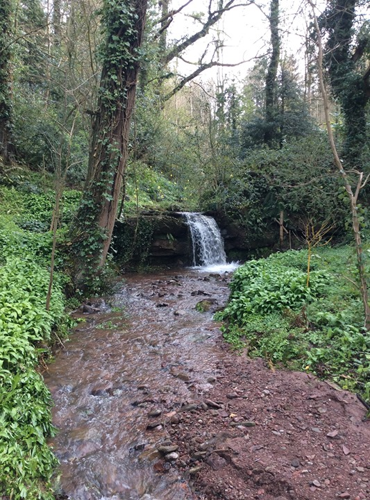 This is the waterfall in our garden which leads on to the comfortable and delightful Cusop Mill Cottage ready for letting for a long week end or holiday.