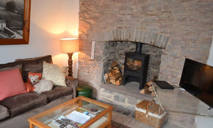 Now almost booked for August but September still free so take advantage of a perfect Autumn in beautiful countryside with apples on the trees and the cider season is on its way.  As you can see we are dog friendly and the dog is friendly too.  www.cusopmillcottage.co.uk